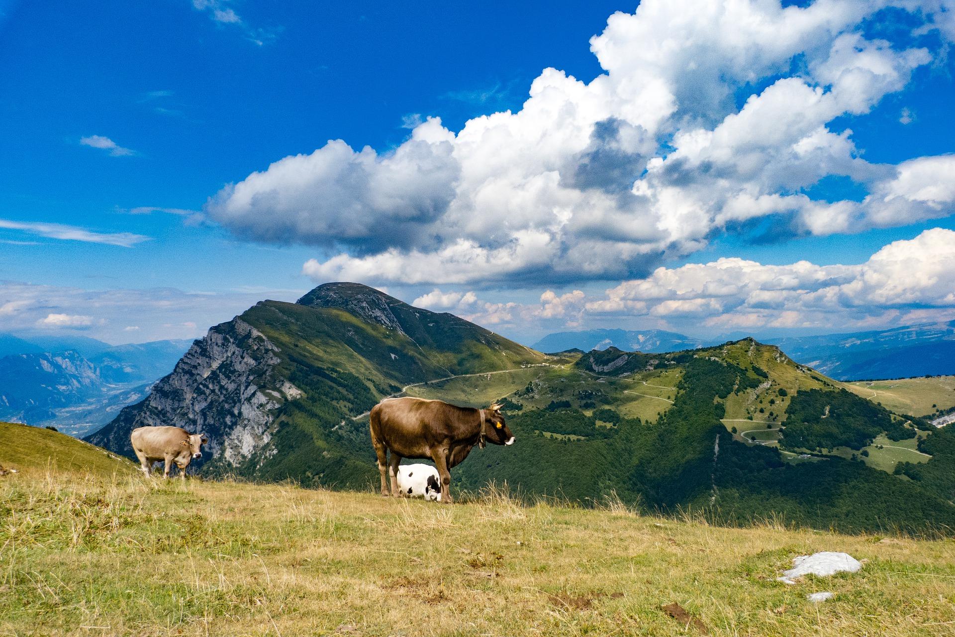 mountains-5016483_1920